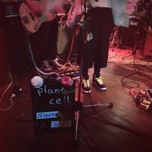 plant cell京都アニーズカフェ2016-04-18 23 04 24